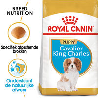 Royal Canin Cavalier King Charles Puppy - Hondenvoer