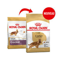 Royal Canin Cocker Adult - Alimentation pour Chiens