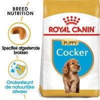 Royal Canin Cocker Puppy - Hondenvoer