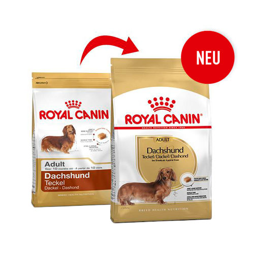 Royal Canin Dachshund Adult - Hundefutter