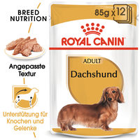Royal Canin Dachshund Adult Wet - Hundefutter