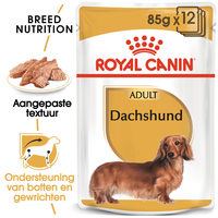 Royal Canin Dachshund Adult Wet - Hondenvoer