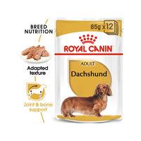 Royal Canin Dachshund Adult Wet - Dog Food
