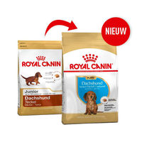 Royal Canin Dachshund Junior - Hondenvoer