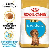 Royal Canin Dachshund Puppy - Hundefutter