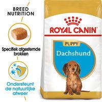Royal Canin Dachshund Puppy - Hondenvoer