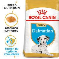 Royal Canin Dalmatian Junior - Alimentation pour Chiens