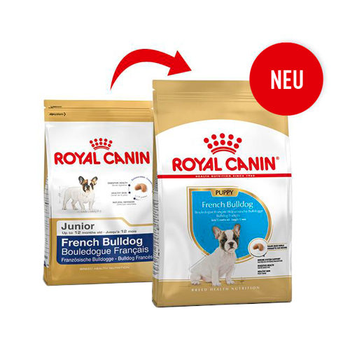 Royal Canin French Bulldog Junior - Hundefutter