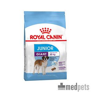 royal canin giant junior welpenfutter bestellen. Black Bedroom Furniture Sets. Home Design Ideas