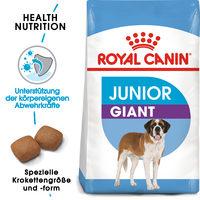 Royal Canin Giant Junior - Hundefutter