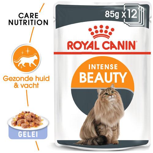 Royal Canin Intense Beauty in Jelly - Kattenvoer