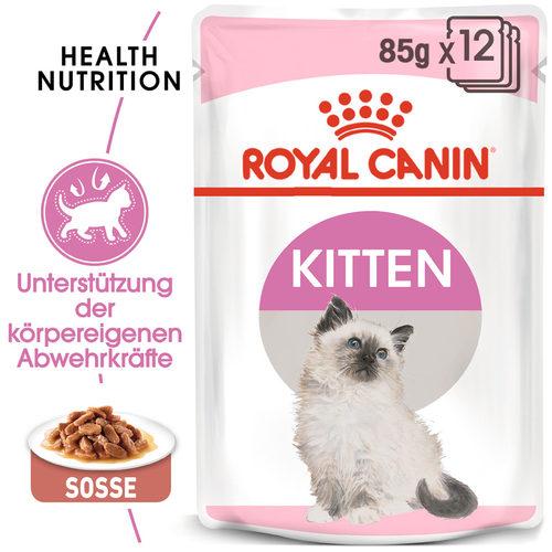 Royal Canin Kitten in Gravy - Katzenfutter