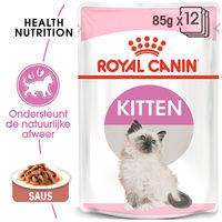 Royal Canin Kitten in Gravy - Kattenvoer