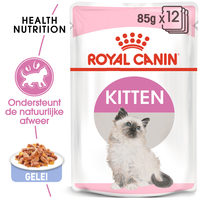 Royal Canin Kitten in Jelly - Kattenvoer