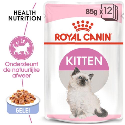 Royal Canin Kitten in Jelly - Kattenvoer