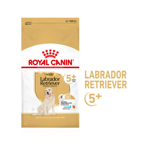 Royal Canin Labrador Retriever Adult 5+