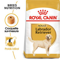 Royal Canin Labrador Retriever Adult - Alimentation pour Chiens