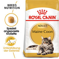 Royal Canin Maine Coon Adult - Katzenfutter