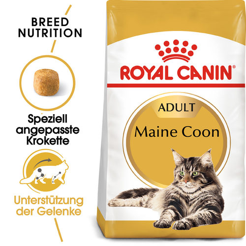 royal canin maine coon adult katzenfutter