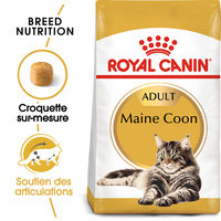 Royal Canin Maine Coon Adult - Alimentation pour Chats