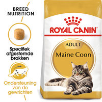 Royal Canin Maine Coon Adult - Kattenvoer