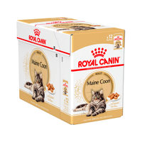 Royal Canin Maine Coon Adult Wet - Cat Food
