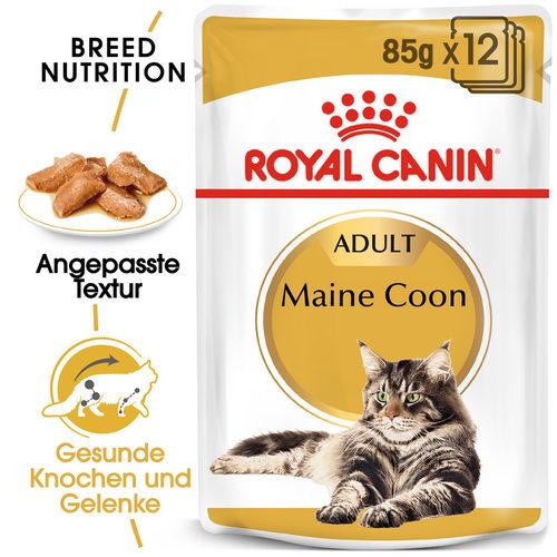 Royal Canin Maine Coon Adult Wet - Katzenfutter