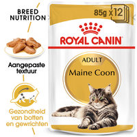 Royal Canin Maine Coon Adult Wet - Kattenvoer