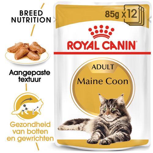 Royal Canin Maine Coon Adult Wet - Kattenvoer