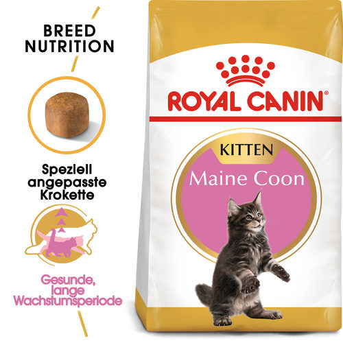 Royal Canin Maine Coon Kitten - Katzenfutter