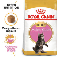 Royal Canin Kitten Maine Coon - Alimentation pour Chatons