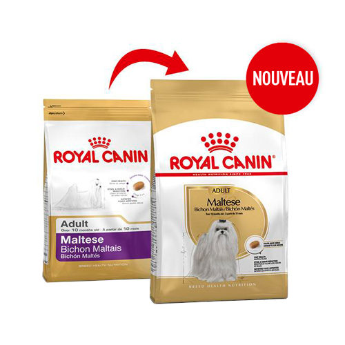 Royal Canin Maltese Adult - Alimentation pour Chiens