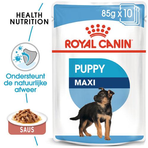 Royal Canin Maxi Puppy Wet - Hondenvoer