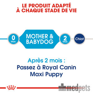Image du produit Royal Canin Maxi Starter Mother & Babydog - Alimentation pour Chiens