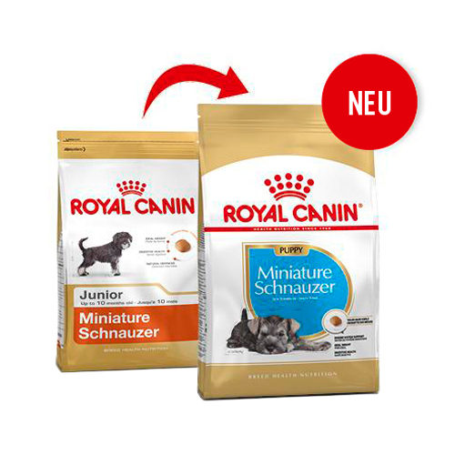 Royal Canin Mini Schnauzer Junior - Hundefutter