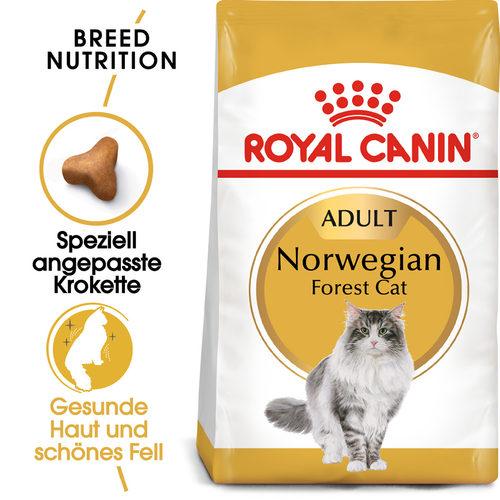Royal Canin Norwegian Forest Cat Adult - Katzenfutter