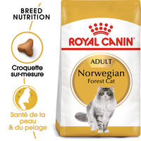 Royal Canin Norwegian Forest Adult - Alimentation pour Chats