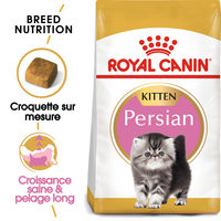 Royal Canin Kitten Persian - Alimentation pour Chatons