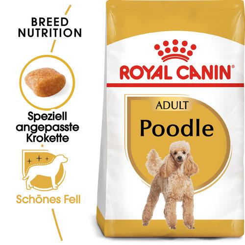 Royal Canin Poodle Adult - Hundefutter