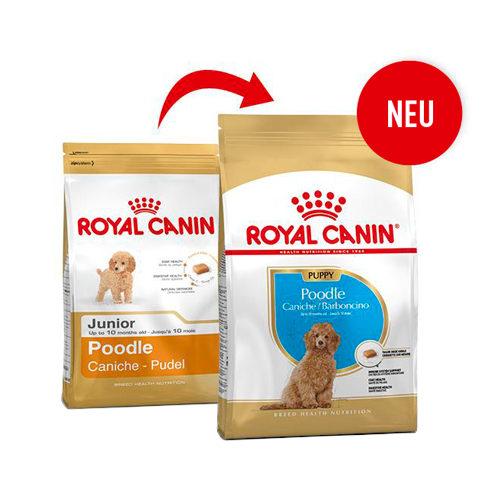 Royal Canin Poodle Junior - Hundefutter