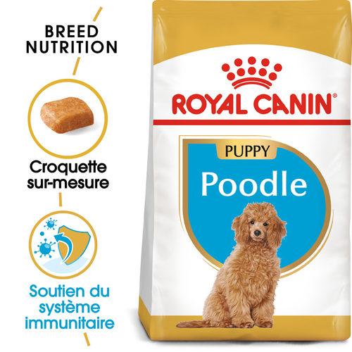 Royal Canin Poodle Puppy - Alimentation pour Chiens