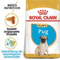 Royal Canin Pug Puppy - Hundefutter