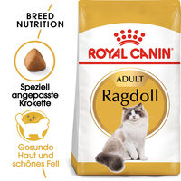 Royal Canin Ragdoll Adult - Katzenfutter