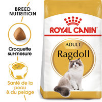 Royal Canin Ragdoll Adult - Alimentation pour Chats