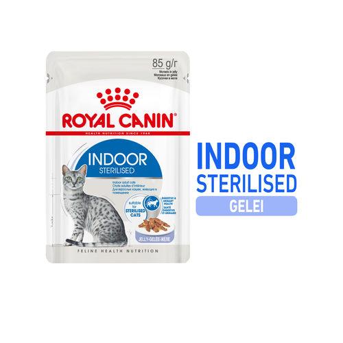 Royal Canin Sterilised Indoor in Jelly - Kattenvoer