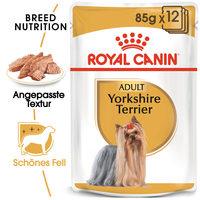 Royal Canin Yorkshire Terrier Adult Wet - Hundefutter