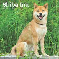 Shiba Inu Kalender 2020