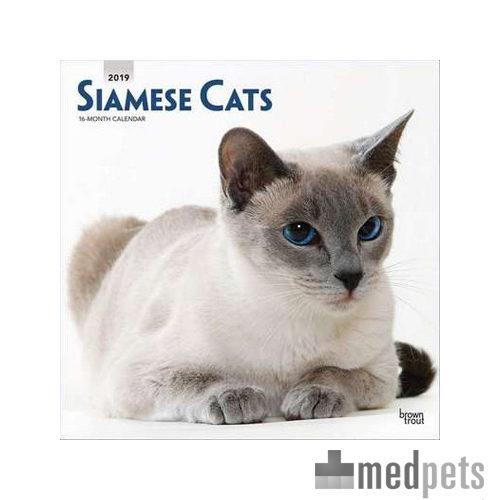 Product afbeelding van Siamese Cats Kalender 2019