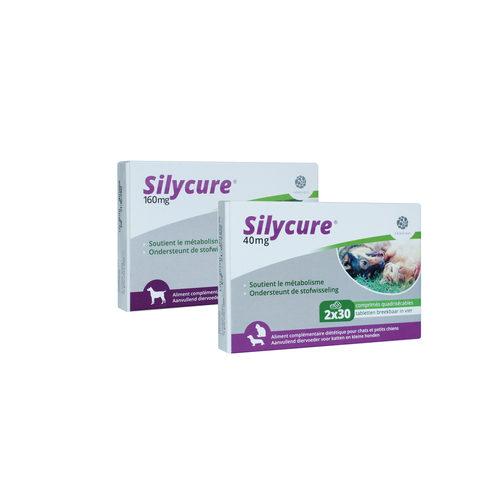 Silycure pour Chien & Chat