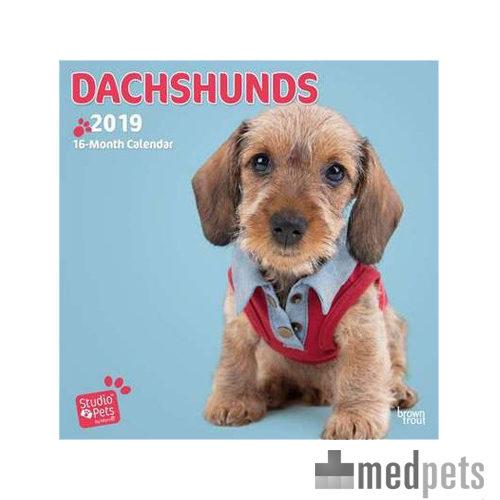 Product afbeelding van Studio Pets Adorable Dachshund Kalender 2019